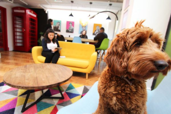 Coworking_Space_Farringdon