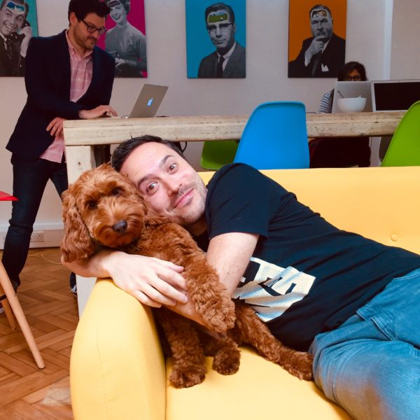 Introducing your dog to the office